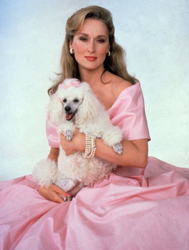 Stars and their dogs through the ages #hollywoodlegends