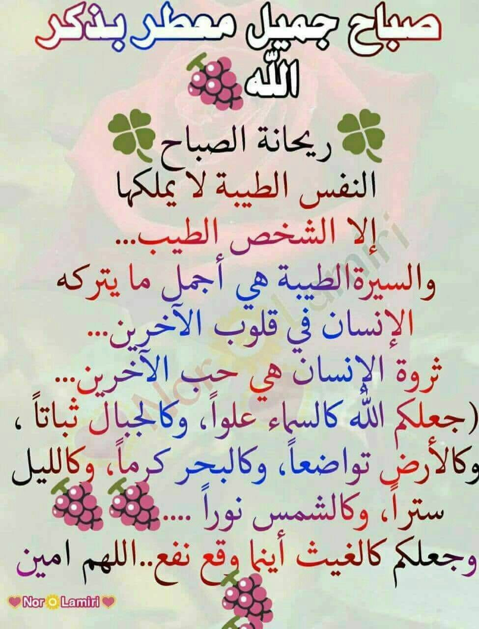 Pin By Chamsdine Chams On صباح مساء الخير Good Morning Quotes Image Quotes Morning Quotes