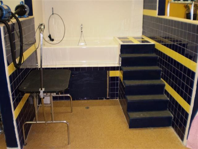 Dog Bath I Want To Build This Into Our Next Home Dog Grooming Tubs Dog Grooming Salons Grooming Salon