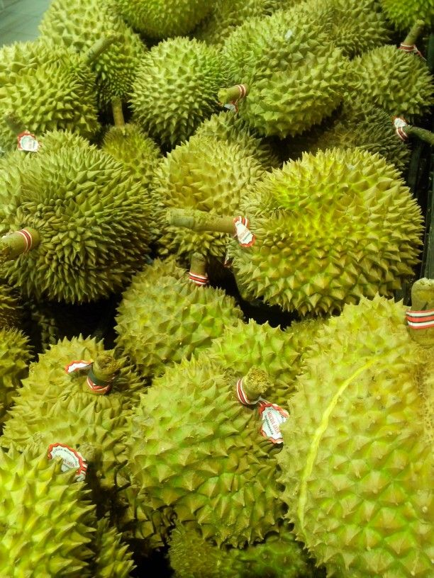 Durian..the metalhead southeast asian fruit