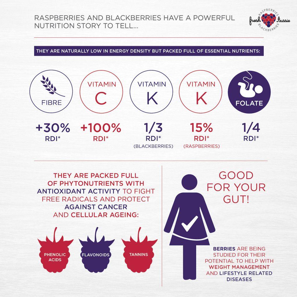 Berries_health report_infographic