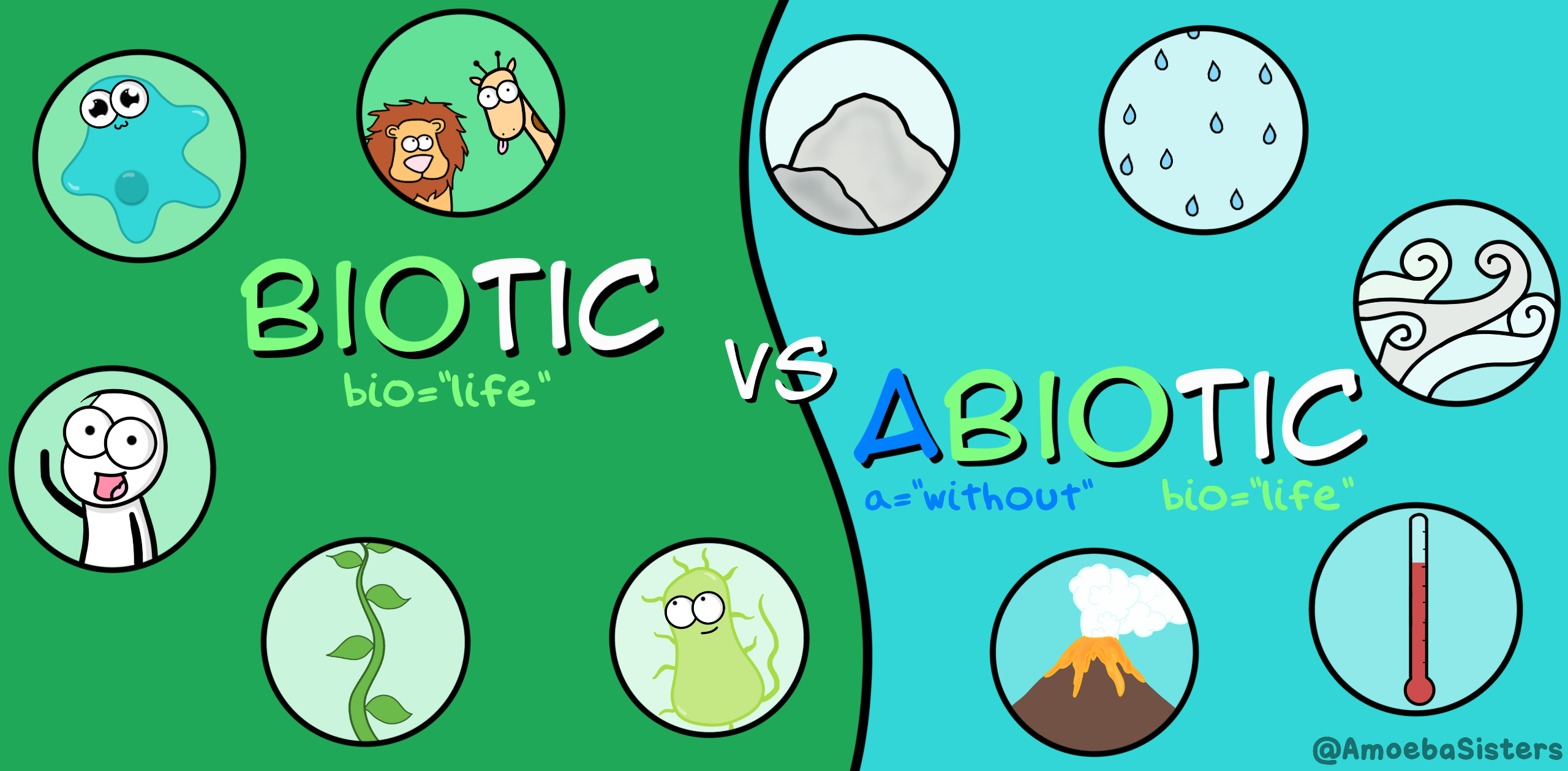 Biotic Vs Abiotic Factors I Biology I The Amoeba Sisters Abiotic Biology Lessons Life Science