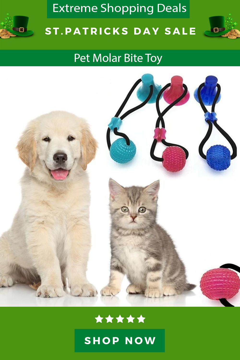 Pin On Pets At Home
