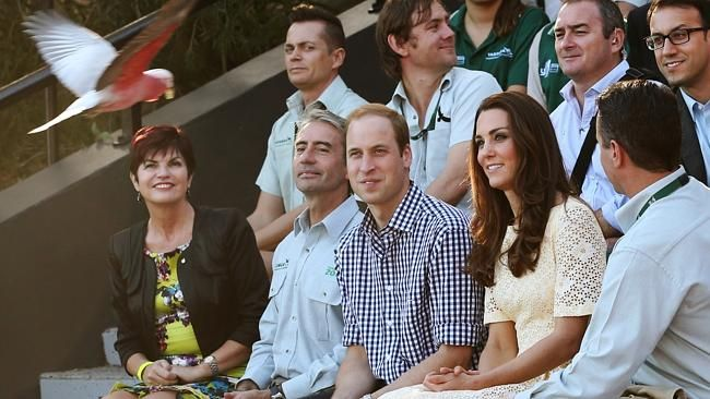 April 20, 2014 - Prince William and Duchess Kate watch the Taronga Free Flight Bird Show during their visi