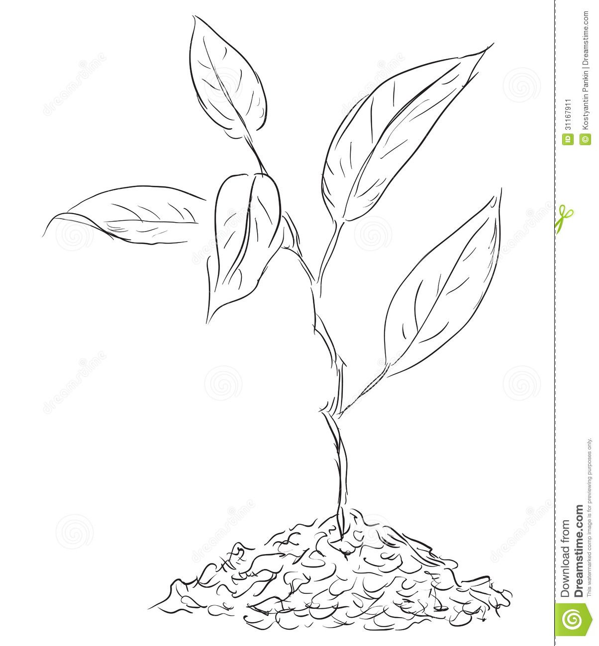 coloring pages seeds soil - photo#17
