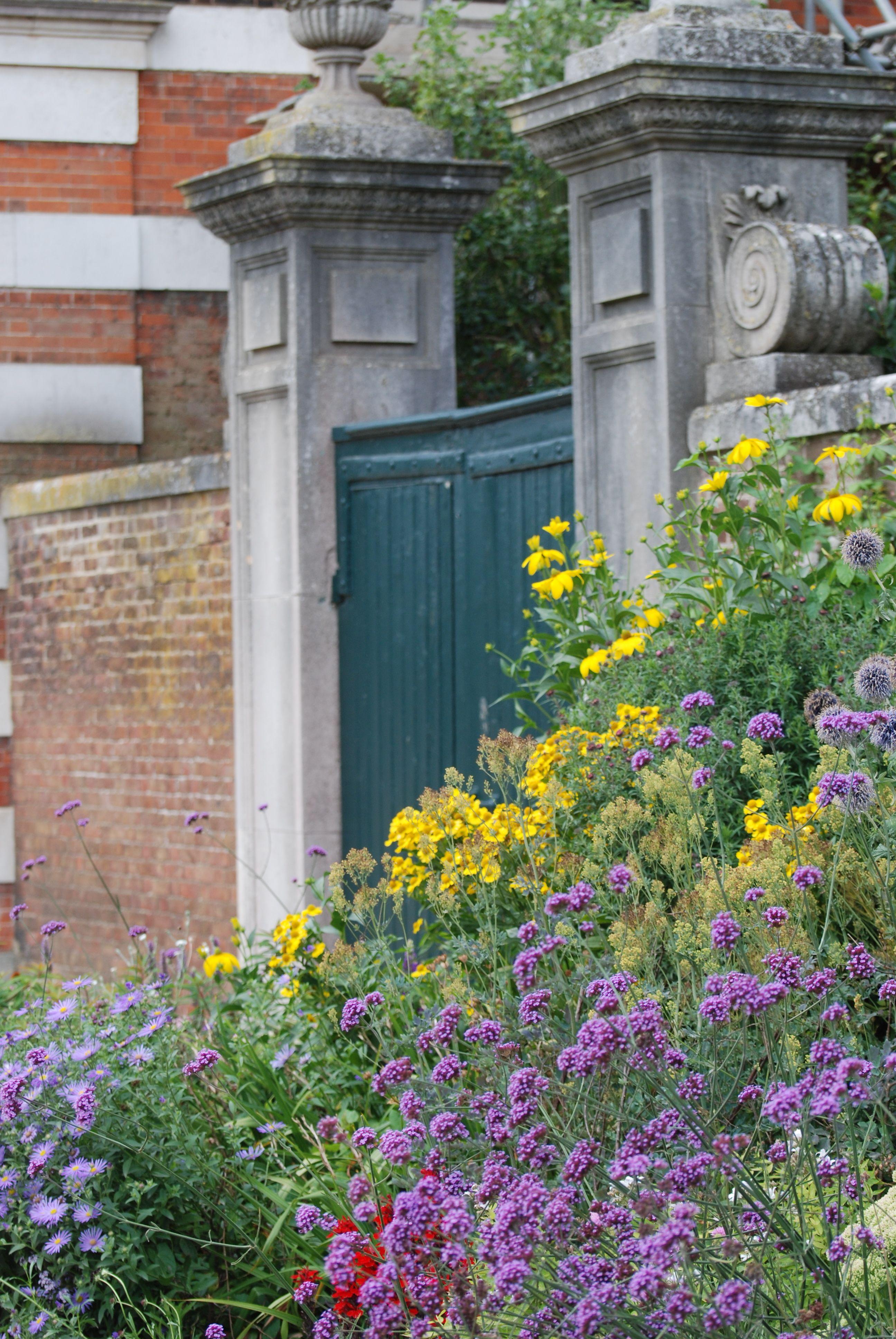 Roses In Garden: Hampton Court, Garden, Palace