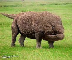 Weird Extinct Animals 9