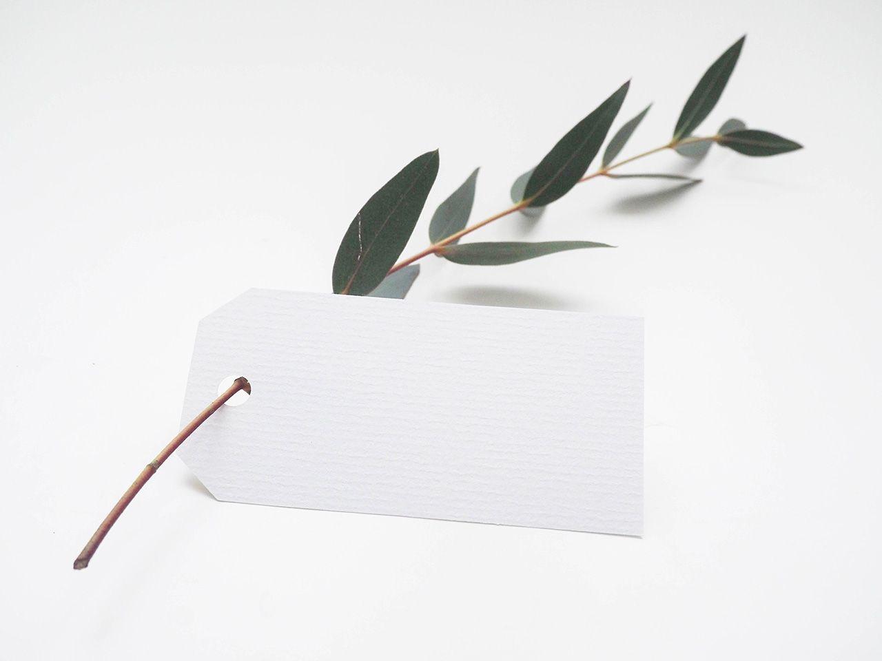 خلفيات فوتوشوب خلفيات روعه للتصميم بدقة عالية Hd فيو تطوير الأعمال Unsplash Photo Decision Tree