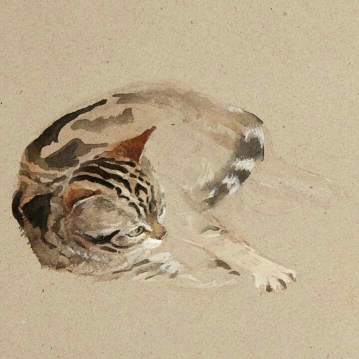 Google Image Result For Https I Pinimg Com 736x Df 13 C0 Df13c0e66f274302bbe6262717c08f29 Jpg In 2020 Watercolor Cat Cat Art Cat Painting