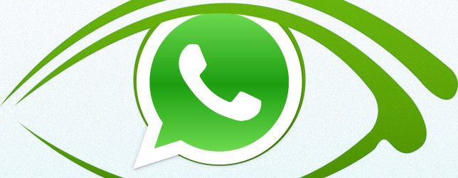 Everything You Need to Know About Your WhatsApp Privacy