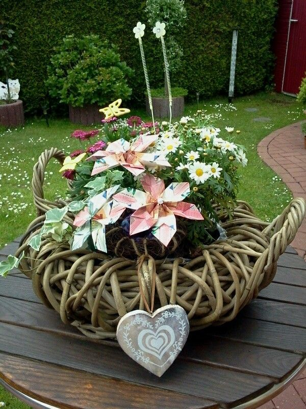 Photo of Planting basket with money flowers – flower ideas