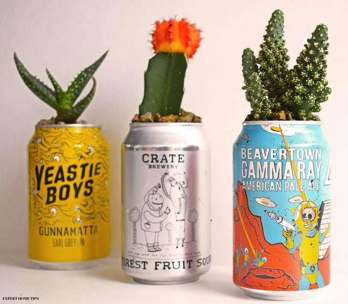 Leftover Drink Cans  Here's The BEST Way To Reuse Them is part of Plant pot diy, Diy plants, Cactus diy, Cactus planter, Diy planters, Cactus plant pots - Love Upcycling  Then this cactus plant pot DIY using empty drink cans is for you  Check it out now and give your cans a new lease of life!