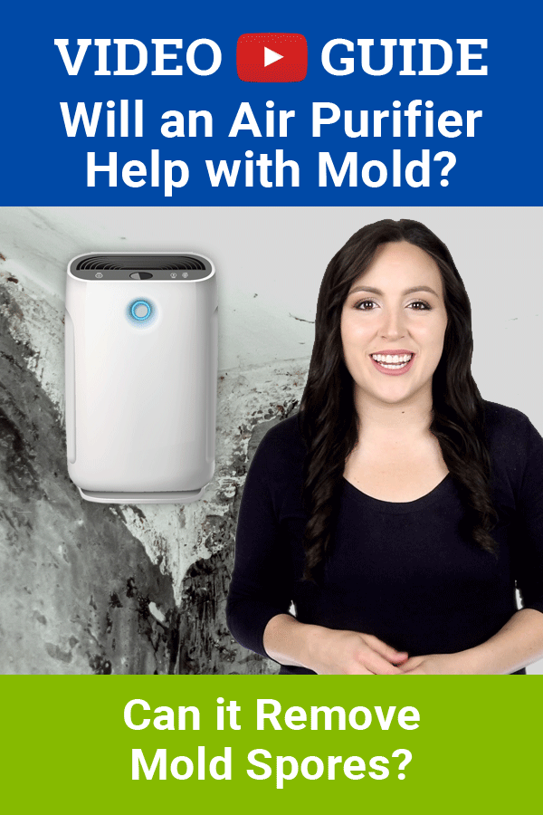 Wondering will an air purifier help with mold? Or can an