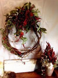 吉本弘美 Driedflower collection O・ha・na・shiエキサイトブログ (blog)