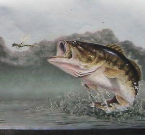 Bass Fishing Bass Fishing Fish Fish Art