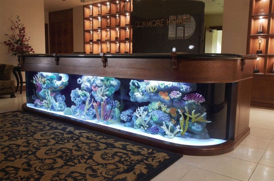 Tavolino Acquario ~ Reception desk fish tank fish tanks in the office pinterest