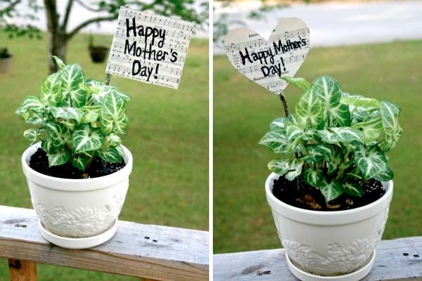 mothers day plant flags
