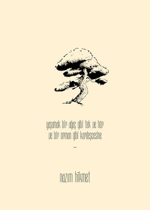 Yaşamak bir ağaç gibi tek ve hür ve bir orman gibi kardeşçesine...   - Nazım Hikmet