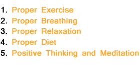 Ayurvedic Wellness Course Main points of yoga