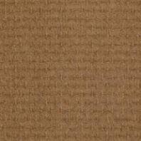 Tigressa H2o Waterproof Carpet And Resista Plus H2o Waterproof