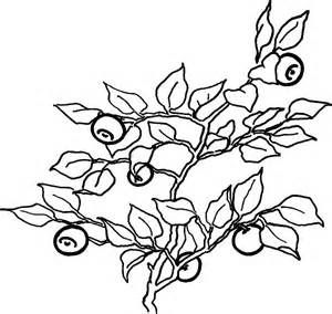 Coloring images of blueberrys yahoo image search results Buckwheat Coloring Page Coyote Bush Coloring Page Blueberries Color Page