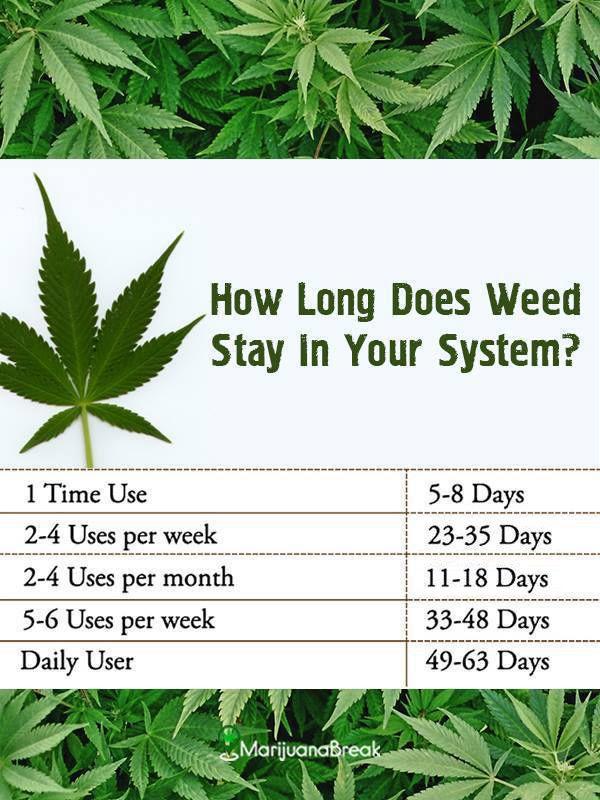 Pin On Health Cannabis Edu