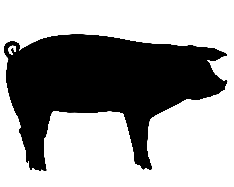 show pig silhouette clip art farm quilt silhouette clip art animal silhouette silhouette [ 3000 x 2400 Pixel ]