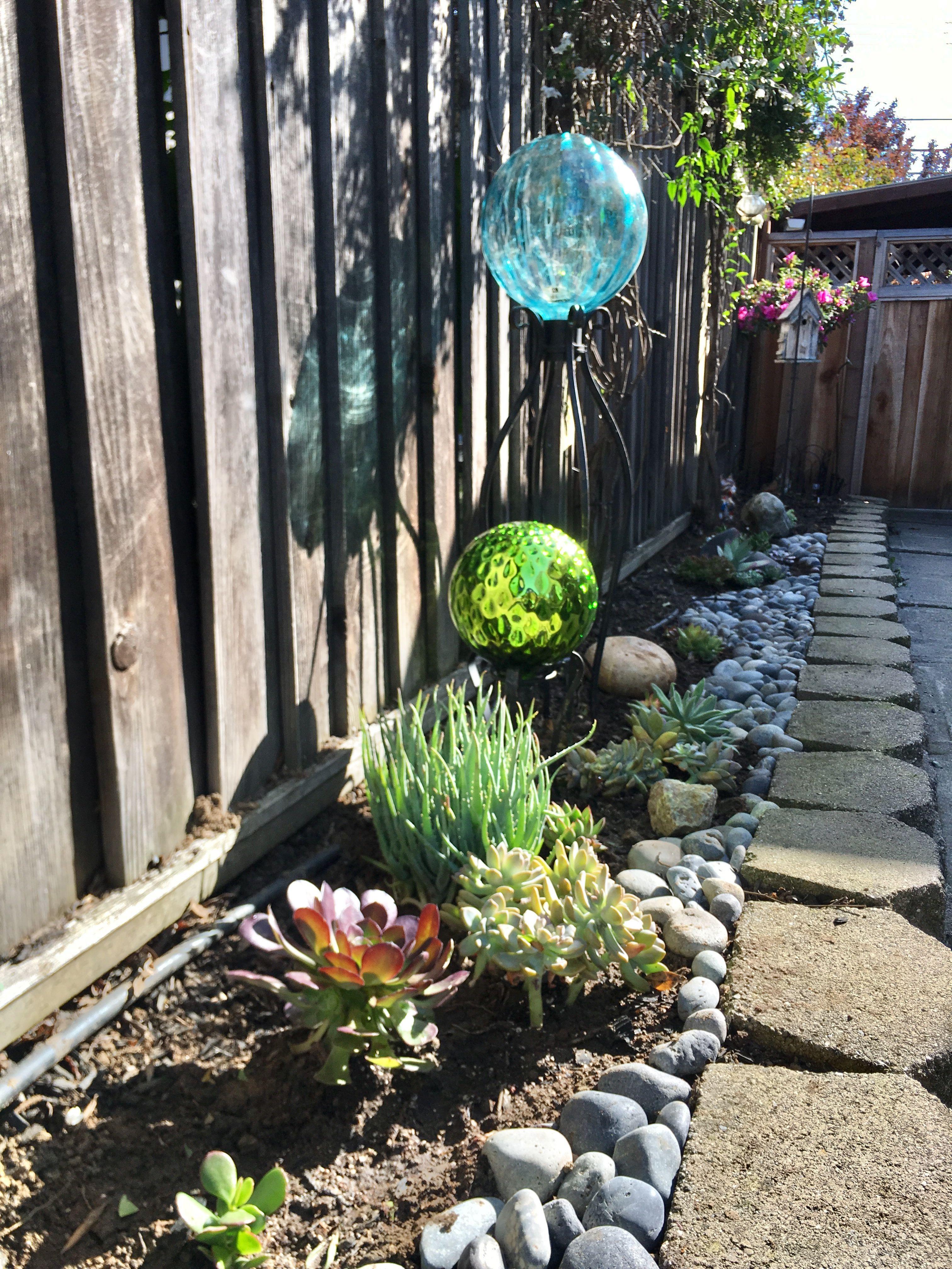 Succulent Garden Side Yard Glass Gloves #Yardgarden