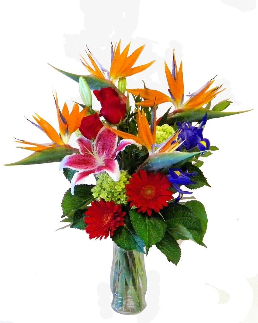 Tropical arrangements yf3123 tropical arrangement flowers tropical arrangements yf3123 tropical arrangement izmirmasajfo Images