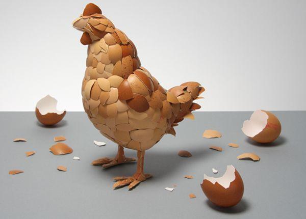 gallina-huevos / con cascaras de huevo ¡¡¡¡