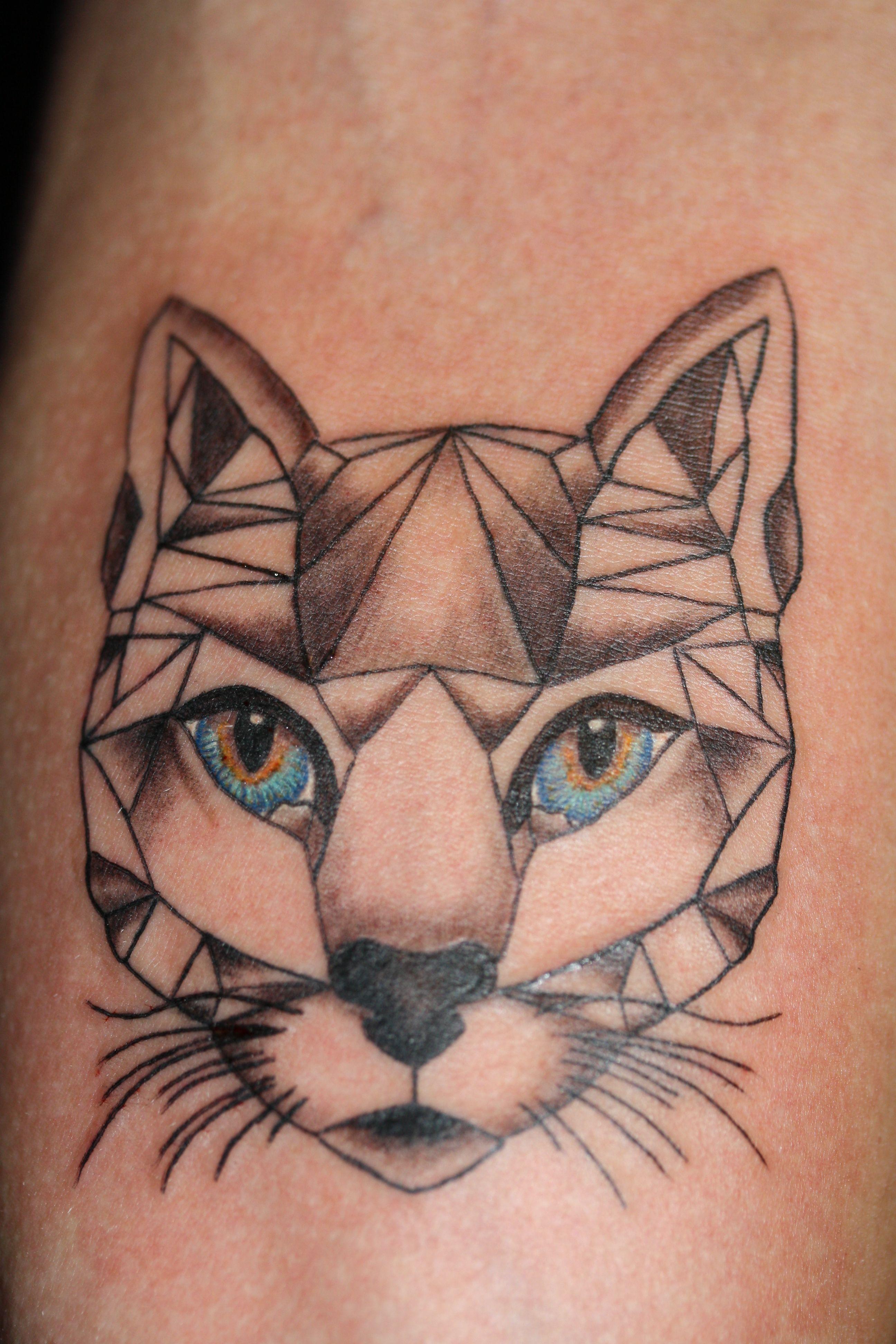 Tatuaż Geometryczny Kot Z Kolorowymi Tęczówkami Wykonanie