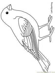 Free Picture Of Robin Bird Coloring Pages Bird Template Bird Drawings