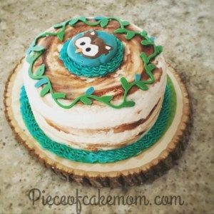 Easy diy owl smash cake boys first birthday idea Piece Of Cake