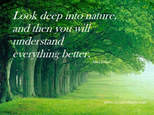 Nature Quotes. QuotesGram | Environmental Quotes | Pinterest ...