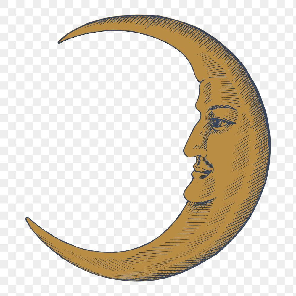Hand Drawn Crescent Moon With Face Design Element Free Image By Rawpixel Com Hein Crescent Moon Art Vintage Moon Moon Icon