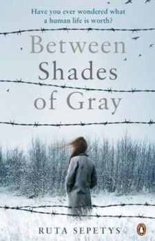 what is shades of gray about