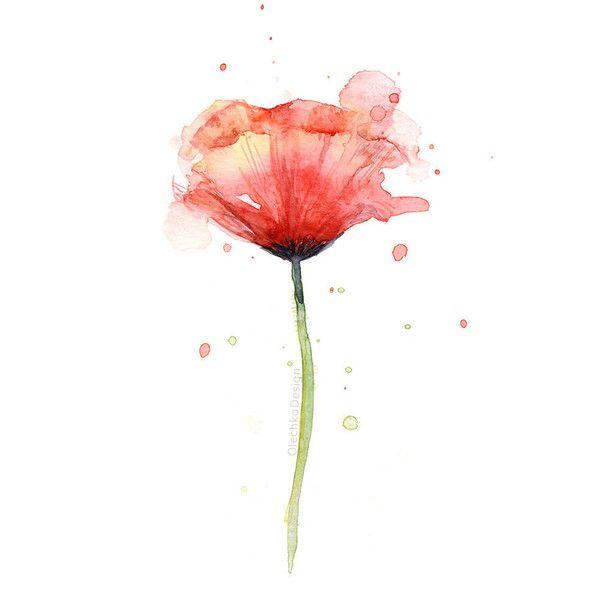Red Poppy Watercolor Flower Art Print Poppies Atmospheric 14 Liked On Polyvore Featuring Hom Watercolor Flower Art Poppy Wall Art Watercolor Poppies