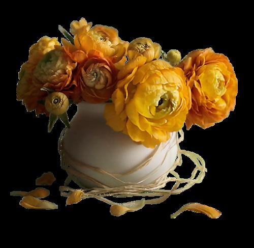 fleurs dans vase vase of flowers pinterest vase. Black Bedroom Furniture Sets. Home Design Ideas
