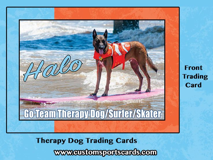 Trading Cards for Therapy Dogs Choose your content and colors - sample trading card