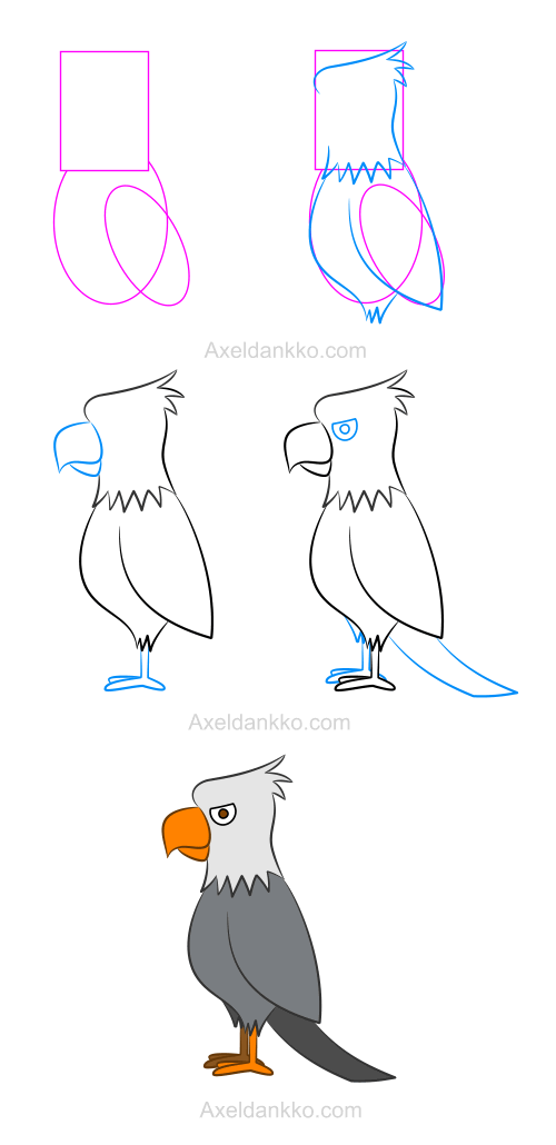 How To Draw An Eagle Comment Dessiner Un Aigle Art Drawings