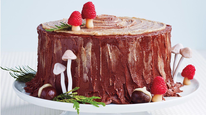YuleLog Layer Cake Recipe Layer cake recipes, Yule