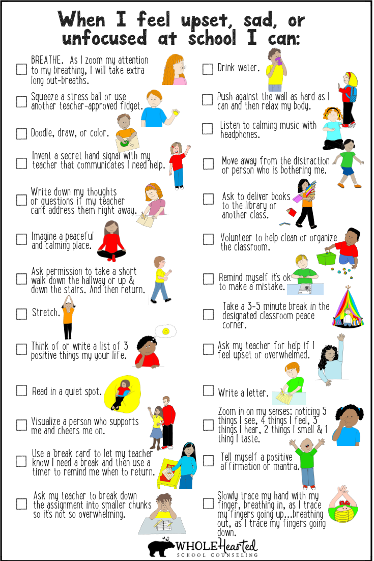 Self-Regulation Coping Strategies for Classroom Ma