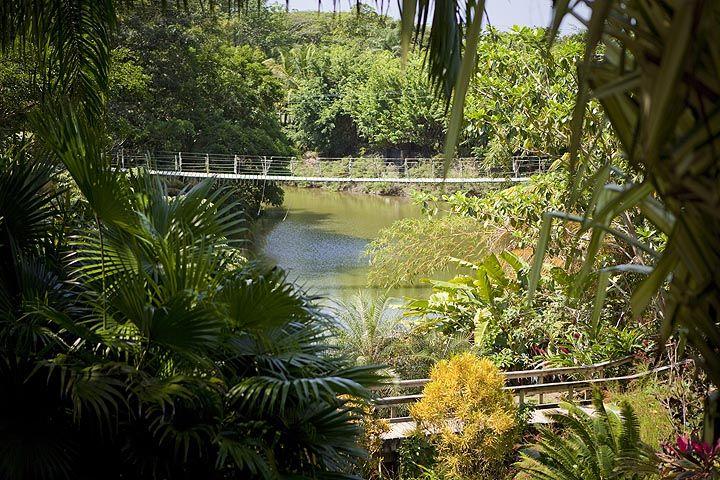 Gumbalimba Natural Park Honduras Roatan Western Caribbean Natural Park