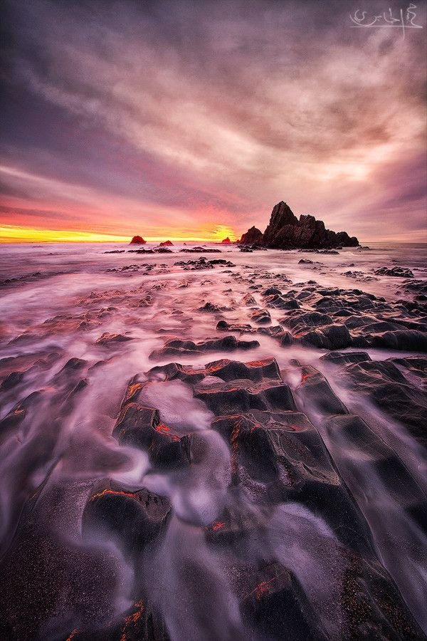 Forever Dreaming, West coast, New Zealand, photo by Mohamed Al Jaberi.