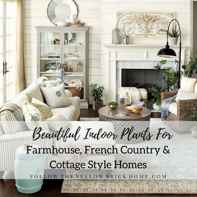 The Best Indoor House Plants For Farmhouse and French ...