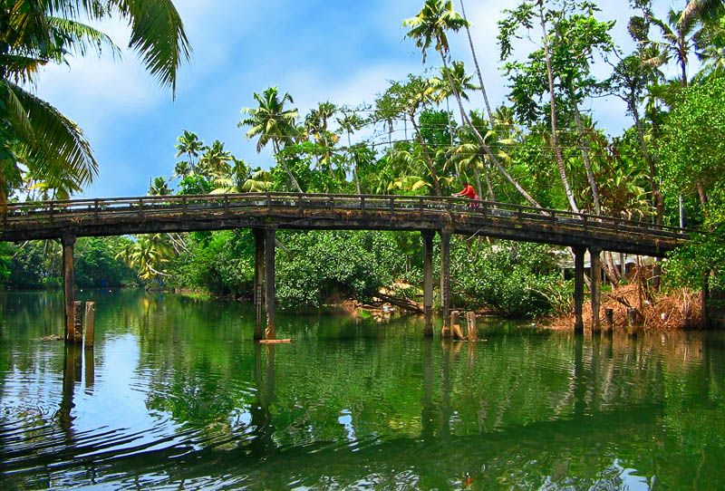 Backwater Paradise in God's Own Country- The Alleppey backwaters in Kerala is a divine experience as the scenic beauty of nature. The picturesque town of Alleppey is known for the unique natural spectacle of backwaters.