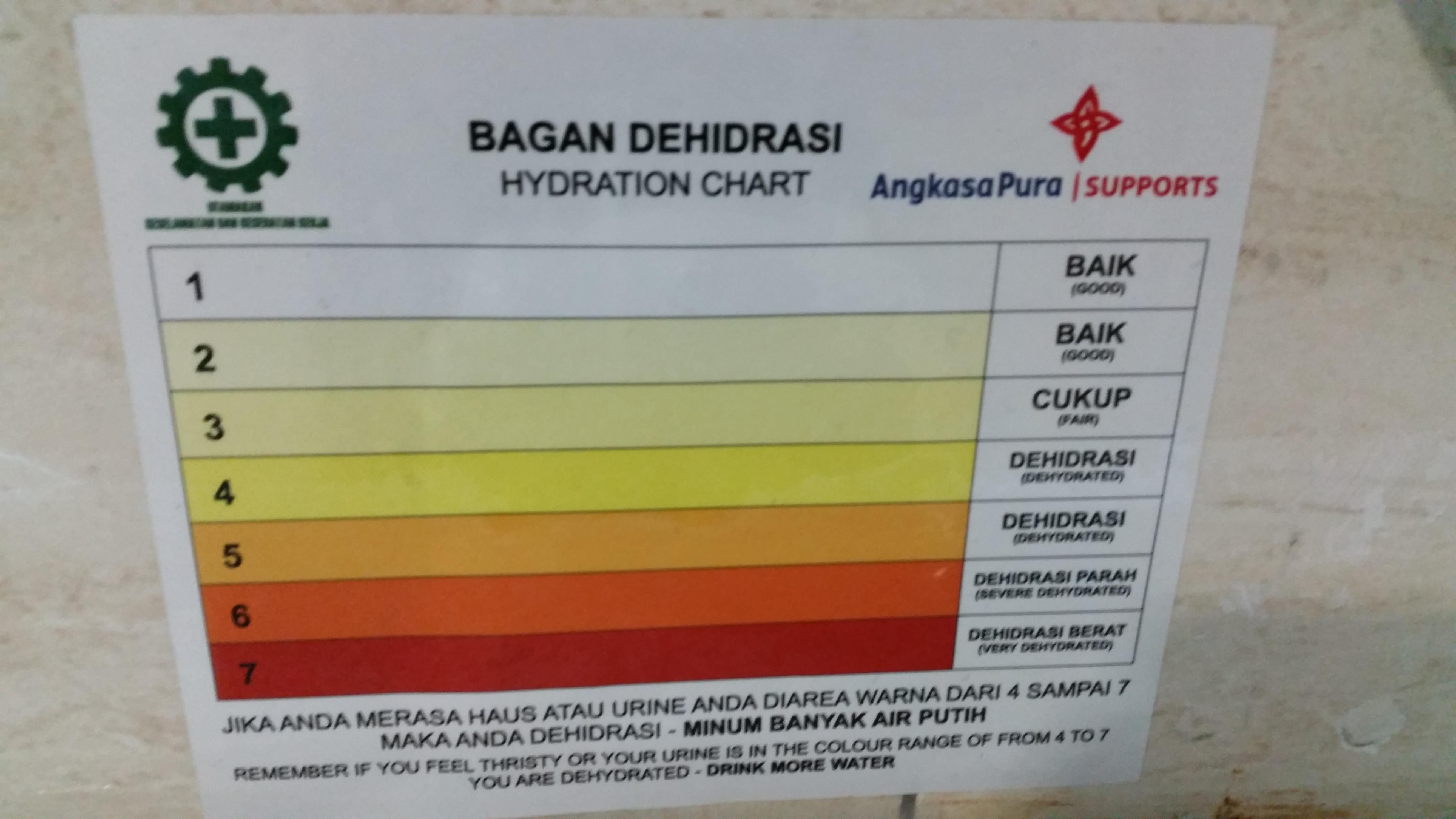 This Urine Color Chart In A Toilet At The Bali Airport  Pets