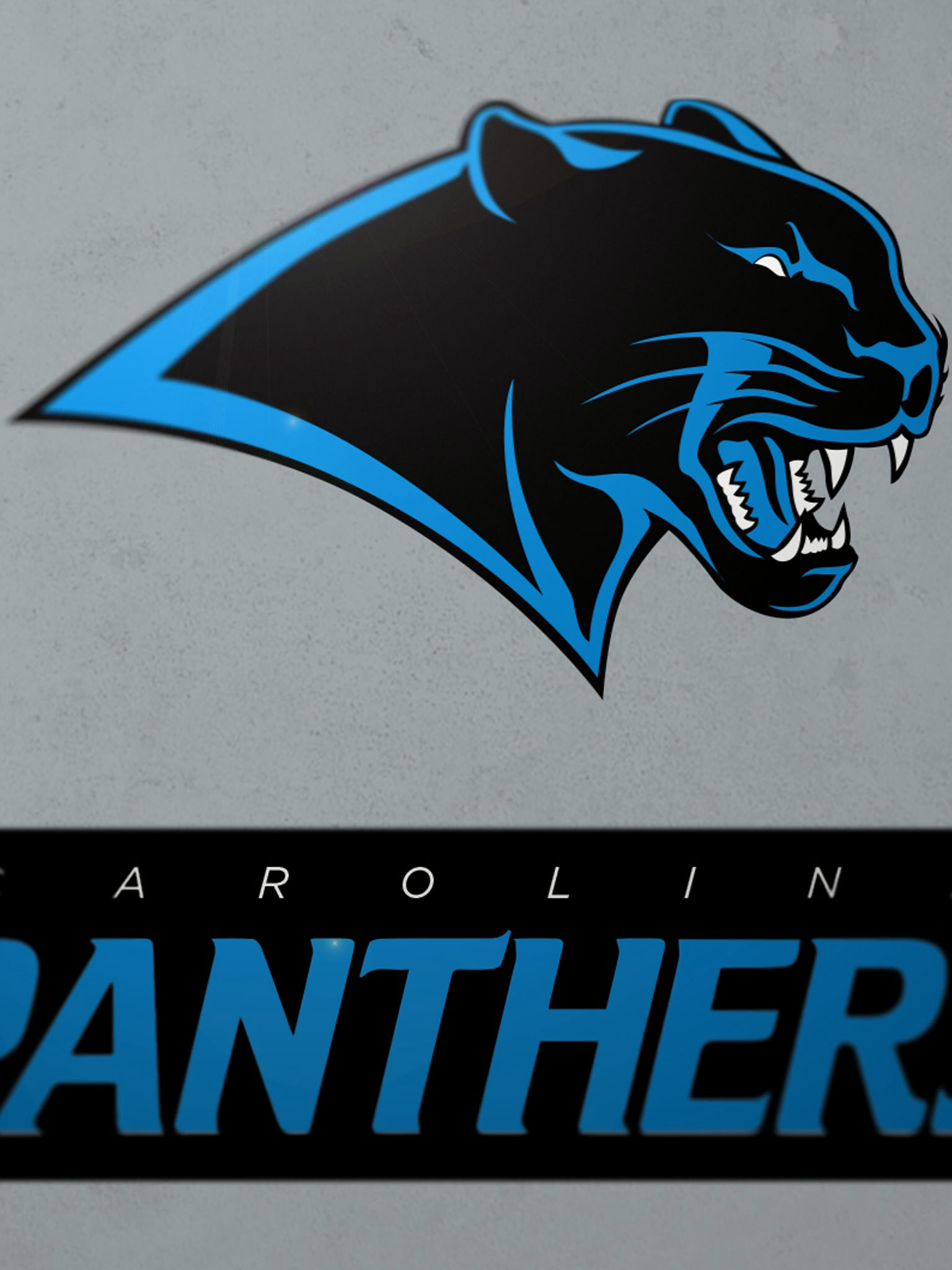 Pin sports logopng on pinterest - Redesigned Nfl Logos For All 32 Teams The Penalty Flag Carolina Panthers