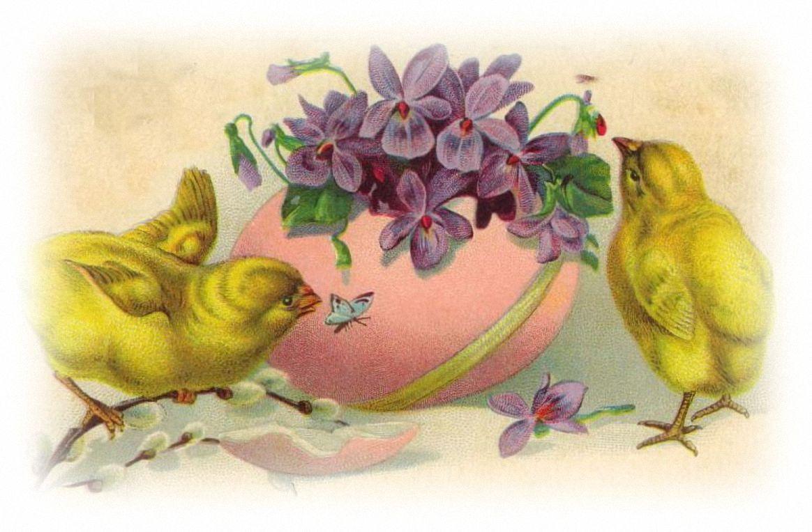 Старые открытки с цыплятами, открытках картинки поздравлением