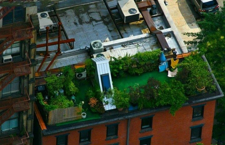 urban rooftop gardens - - Yahoo Image Search Results